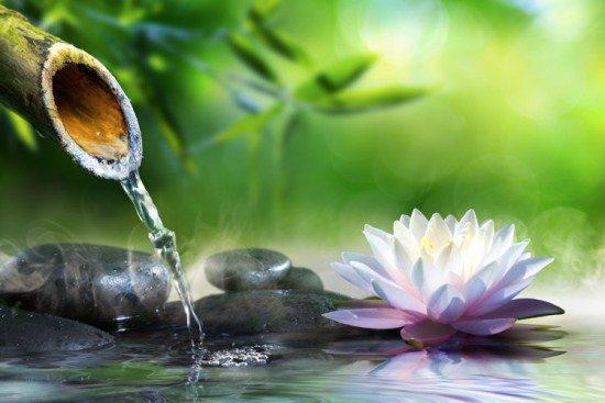 Bambu escorrendo água para um pequeno lago cheio de pedras e uma flor rosa.
