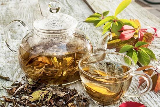 poder das ervas medicinais