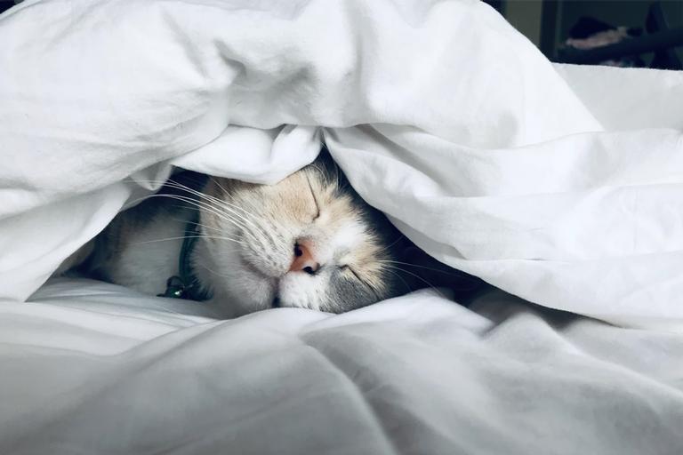 Meditação para dormir rápido