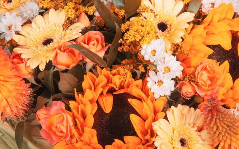 Aprenda simpatias com flores