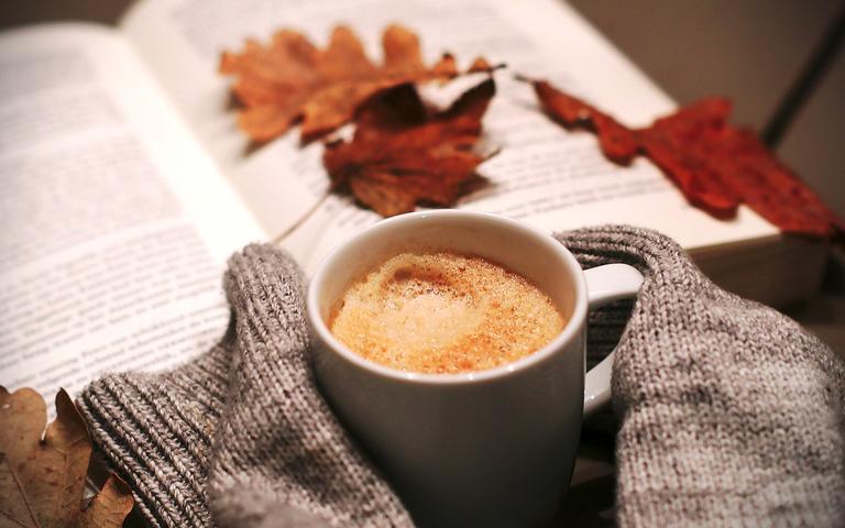 Outono é a época de abrir novos caminhos