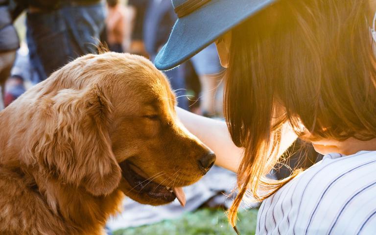 Seu melhor amigo tem tudo a ver com a personalidade do seu signo