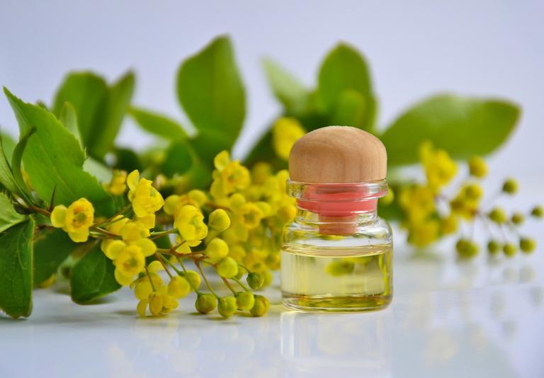 Fortaleça sua imunidade com óleos essenciais