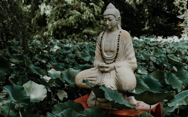 Confira os ensinamentos poderosos de Buda