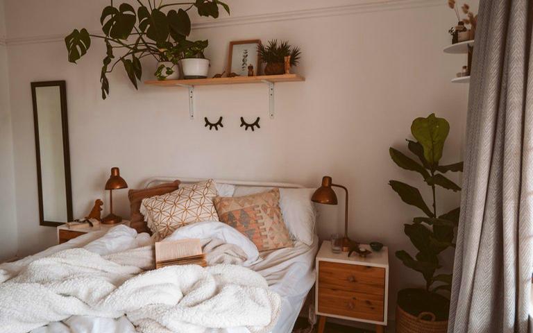 Aproveite a energia das melhores plantas para o quarto