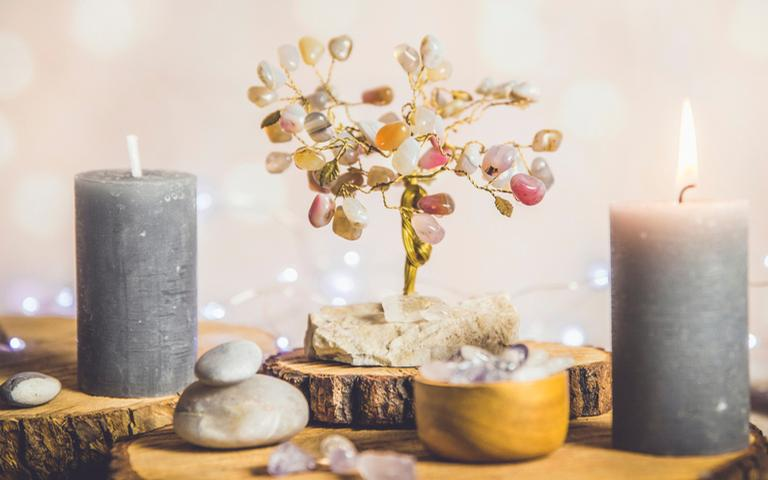 Conheça a árvore da felicidade e escolha a ideal para você