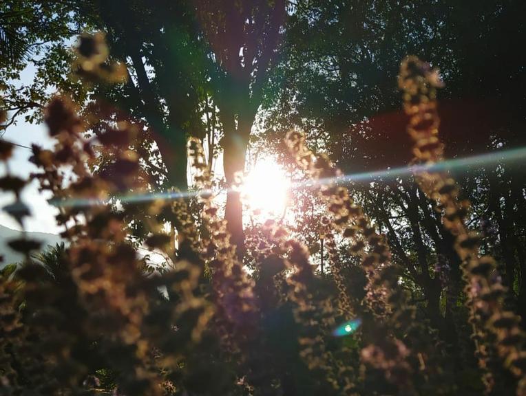Oração de 21 dias para ter poder pessoal, firmeza e abundância