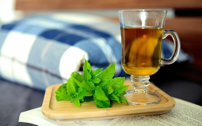 Confira como preparar receitas saudáveis com hortelã