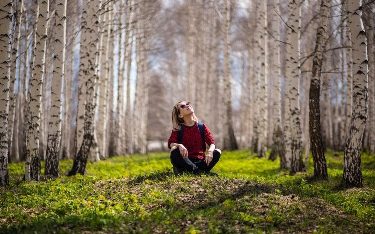 Dia da árvore e nossos laços com a natureza