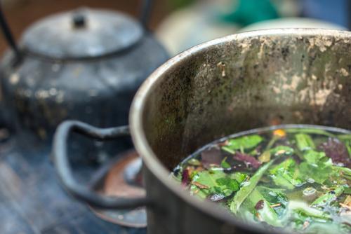 Veja mais sobre a manifestação religiosa e seu chá ayahuasca
