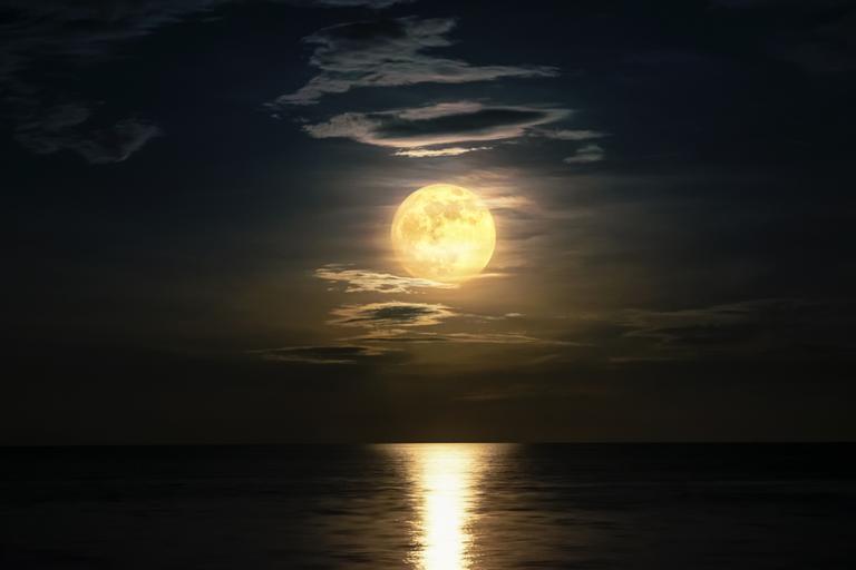 Saiba como a Lua Cheia em Leão vai influenciar sua vida