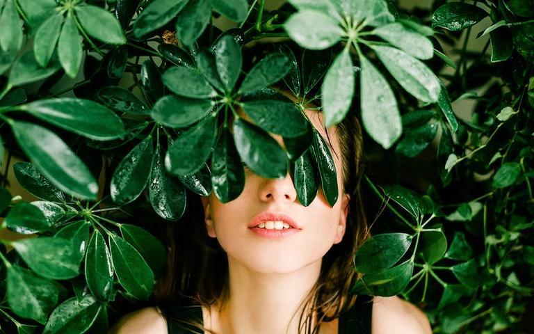 Confira o oráculo das folhas