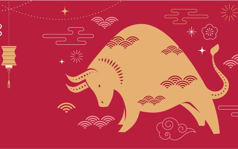 Entenda como funciona o calendário chinês e descubra seu signo animal