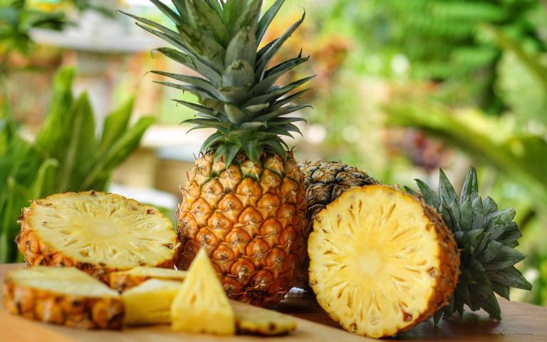 Os melhores alimentos para o corpo físico e espiritual