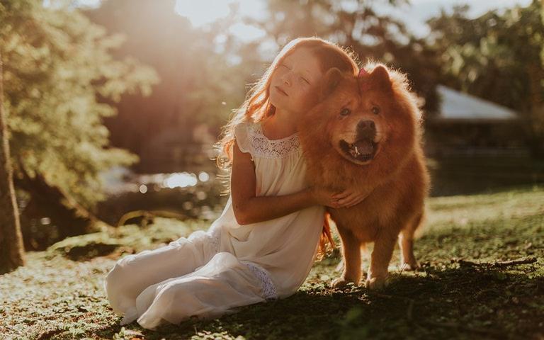 Veja os signos que amam ter um animalzinho