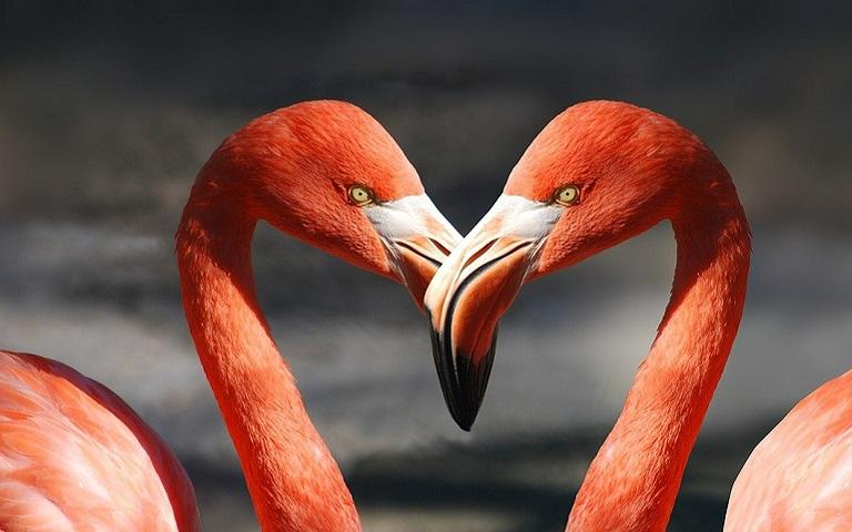 Aprenda a ativar os arquétipos para atrair mais amor a sua vida