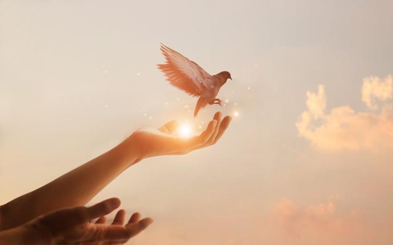 Saiba como aplicar na sua vida o conceito de inteligência espiritual