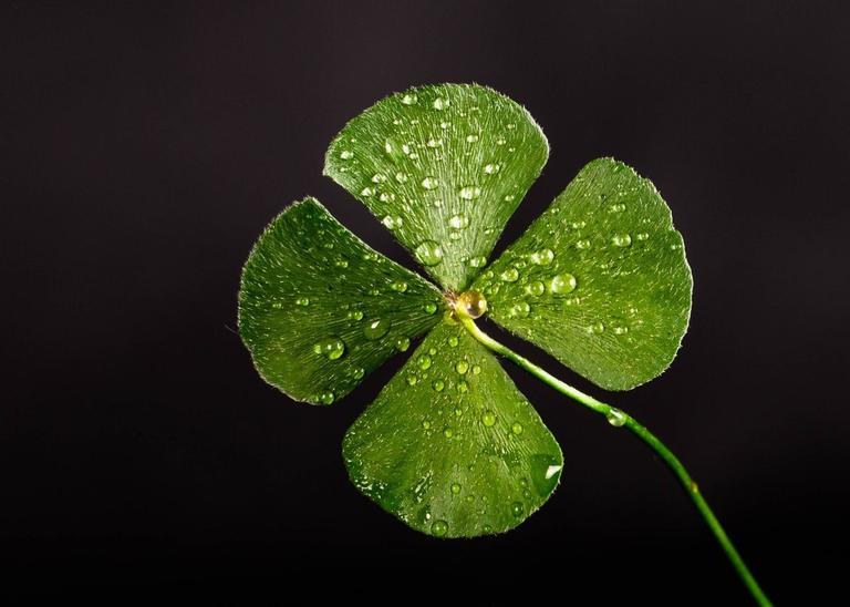 Saiba como usar a sorte ao seu favor!